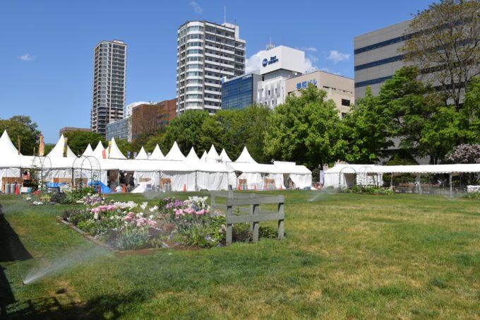 ラーメンショーが開催される大通西8丁目にある芝生広場
