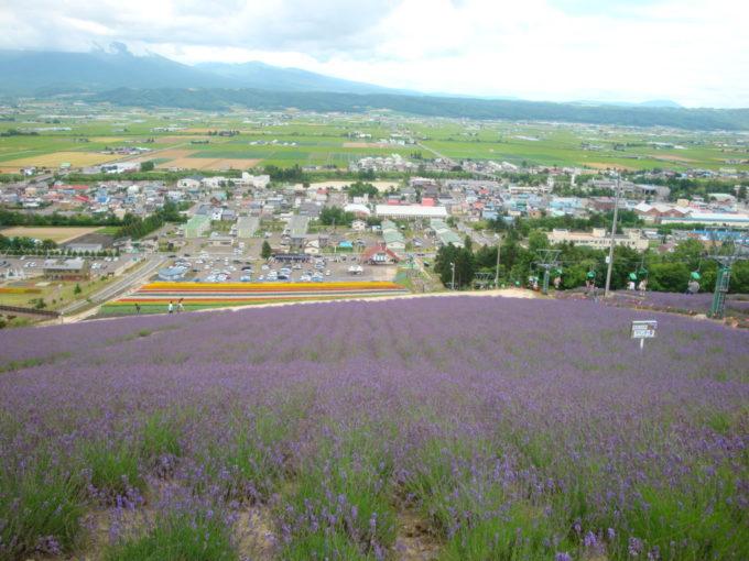 中富良野町営ラベンダー園(北星山ラベンダー園)