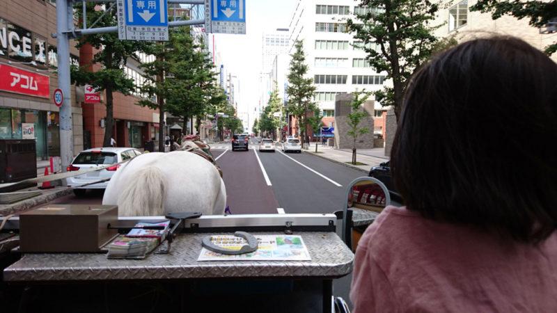 北海道の外遊び・体験観光サイト一覧