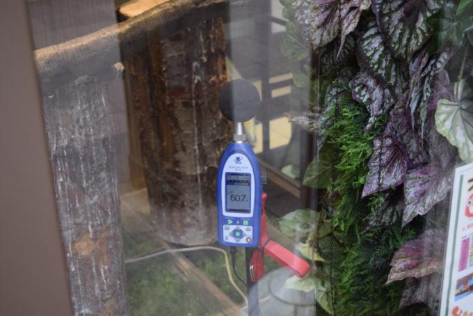 フクロウの展示スペースはホールの大きな音を防音できるような約60dBほどの静音設計