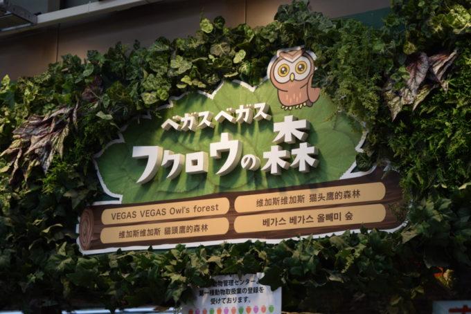 https://tokukita.jp/taiyaki/koufukudou-tanukikouji-aukuchanyaki.html