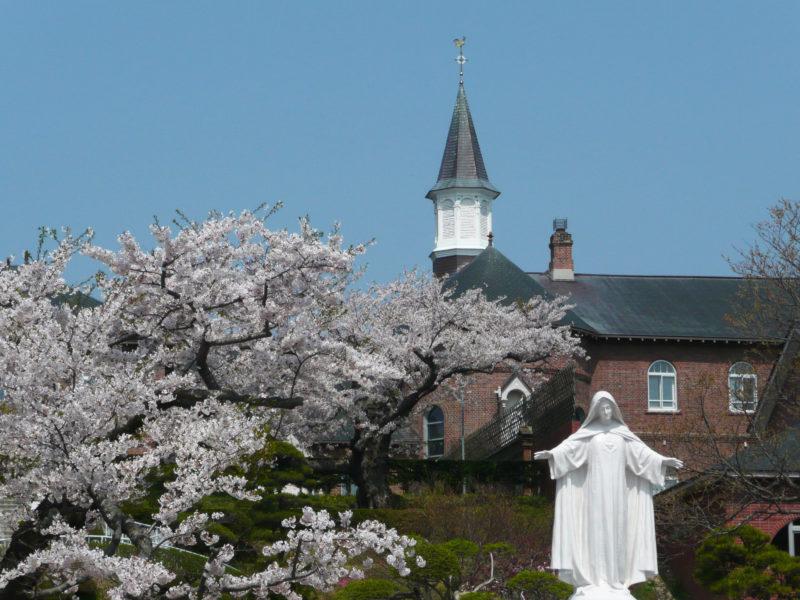 トラピスト修道院の桜