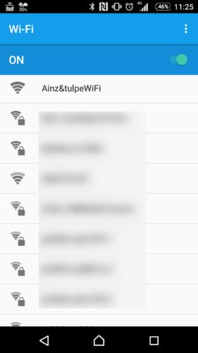 SSID「Ainz&tulpeWiFi」を選択。