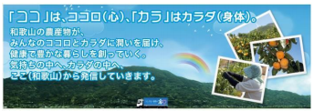 【和歌山県】「和歌山県農業協同組合連合会」広告付年賀はがき