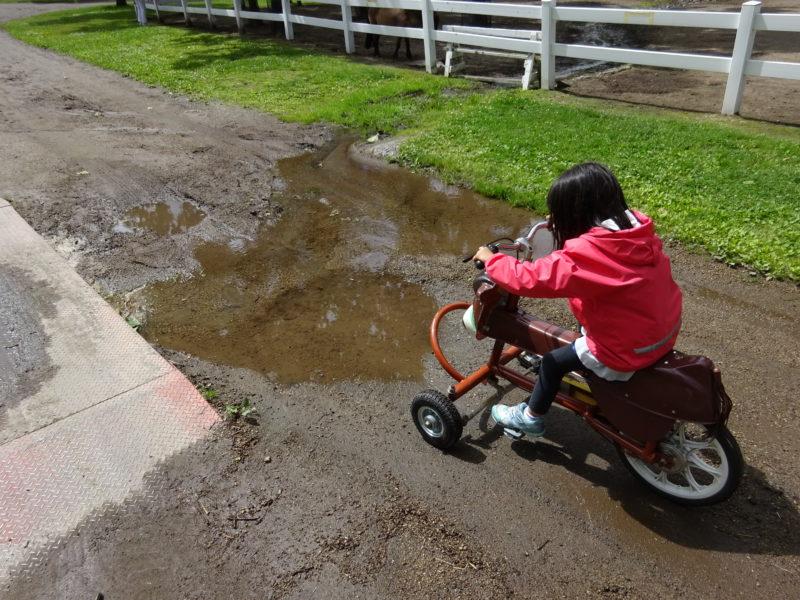 雨上がりの自転車