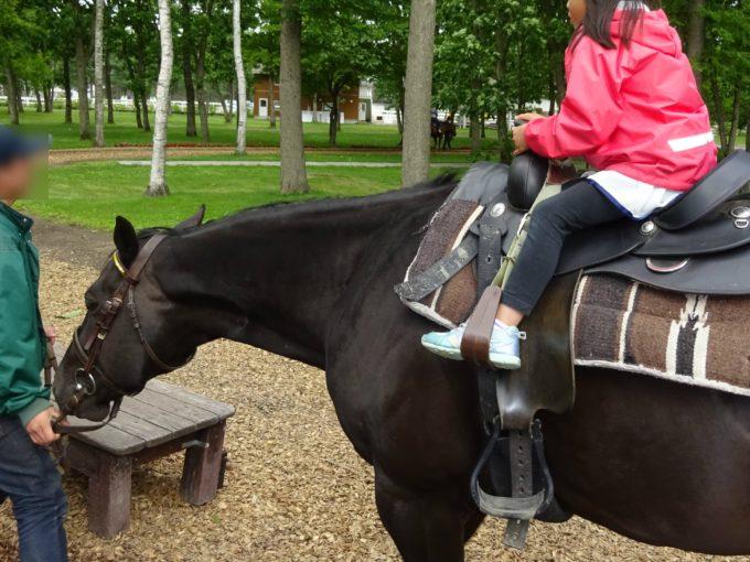 ノーザンホースパーク観光ひき馬
