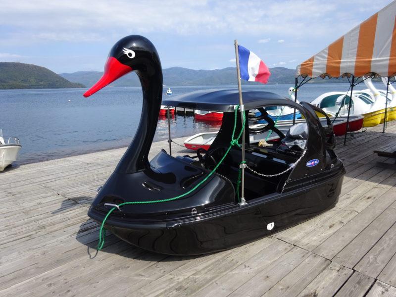 エンジン付きのブラックスワンボート