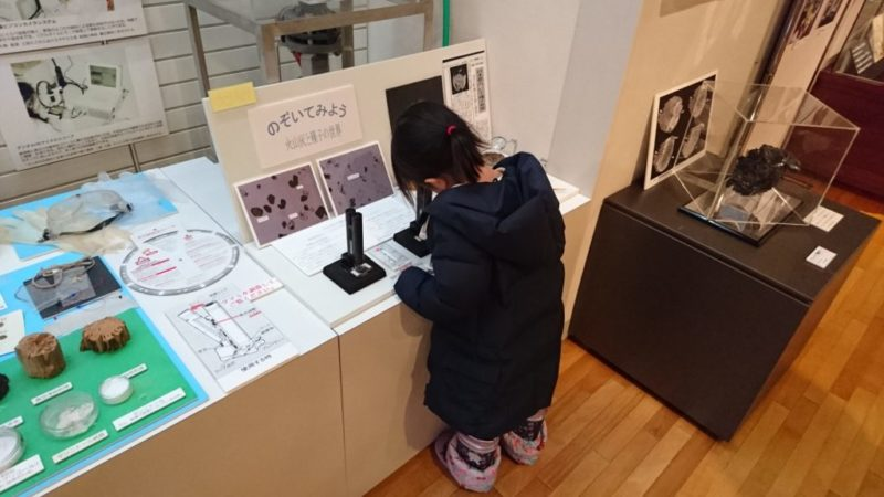火山灰と種子の世界を顕微鏡を使い覗きます