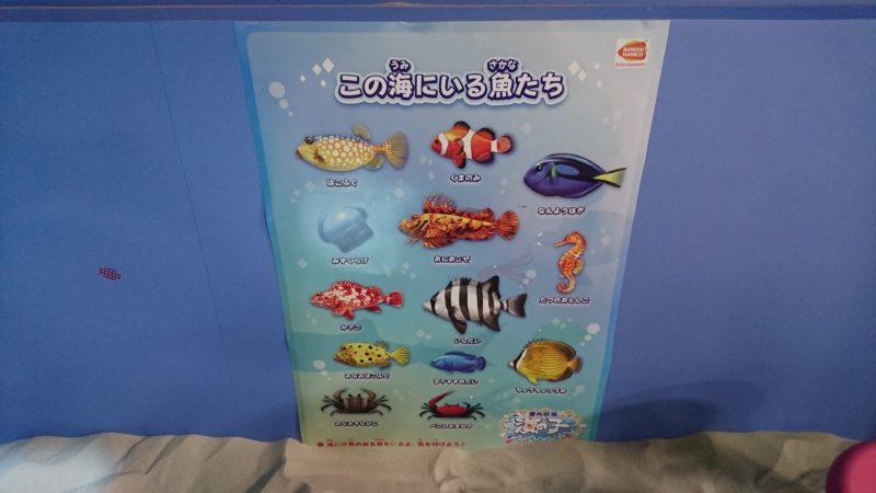 海の子には沢山の魚