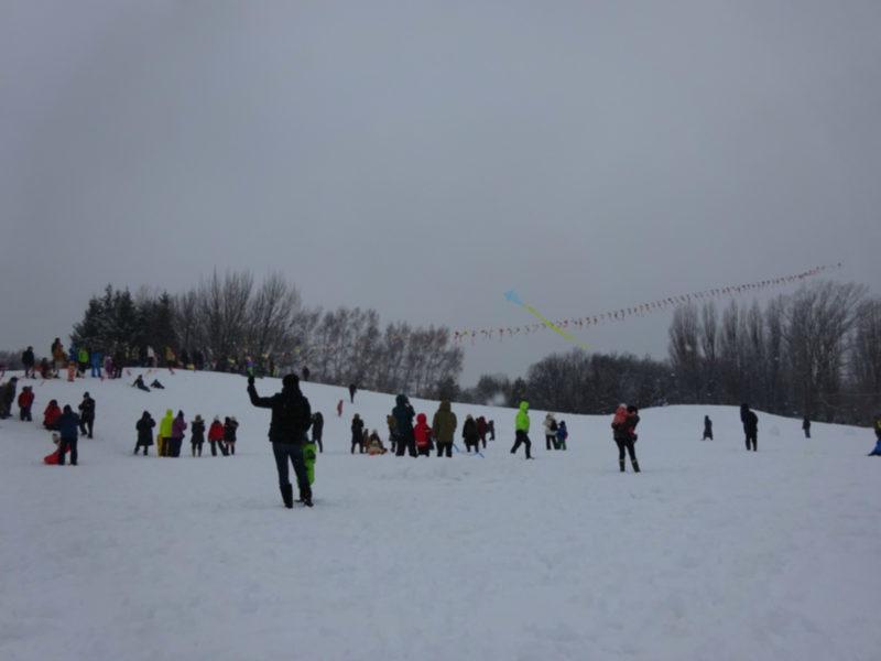 伏古公園の新春恒例「干支の連凧揚げ」
