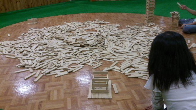 3000ピースあるフランス製の積み木