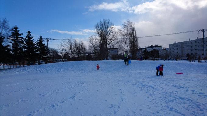 雪のスロープ・ソリ山(小)