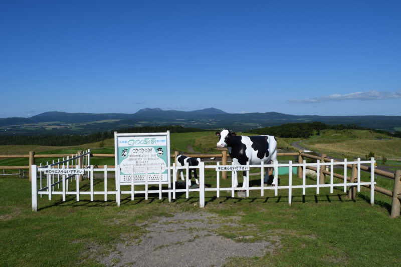牛の形をした顔ハメ看板