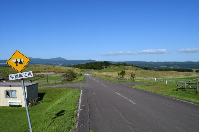 牛横断注意の道路標識