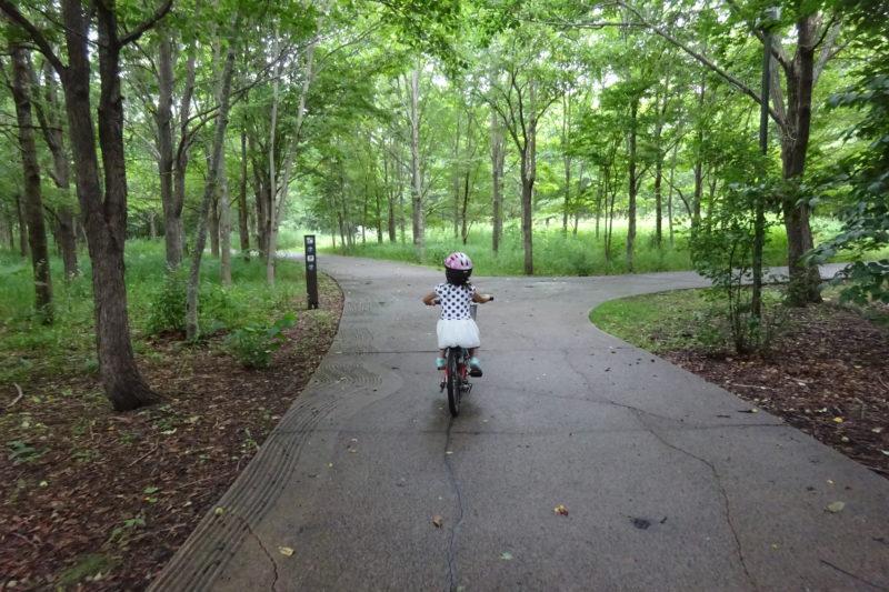 散策路を森林浴しながらのサイクリング