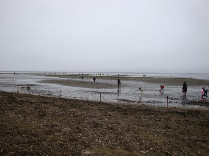 潮干狩り前浜