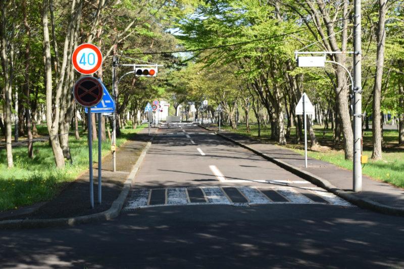 信号機が2組(定周式・押ボタン式)あるほか、横断歩道、交通標識