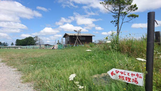 ヒツジとヤギの放牧場