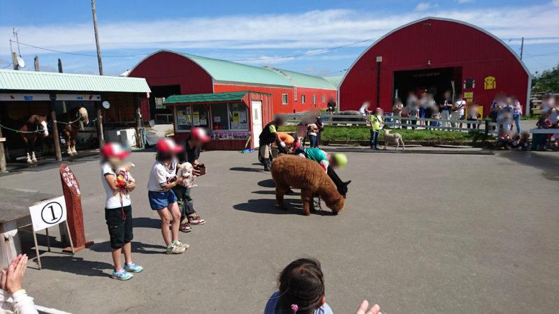 アースドリーム角山農場の中央広場で行進する動物パレード