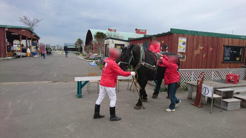 ばん馬引き馬