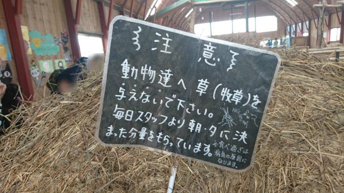 動物たちへの牧草は与えないようにしましょう