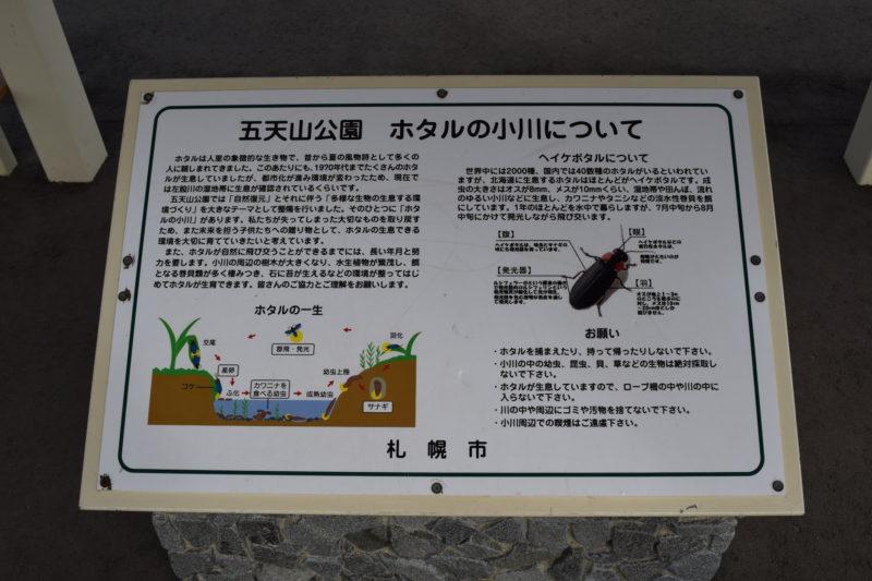 五天山公園ホタルの小川