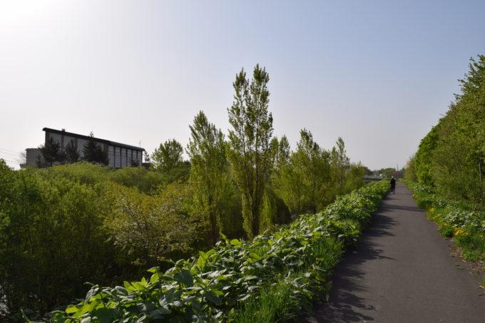 琴似発寒川沿いの高台の遊歩道