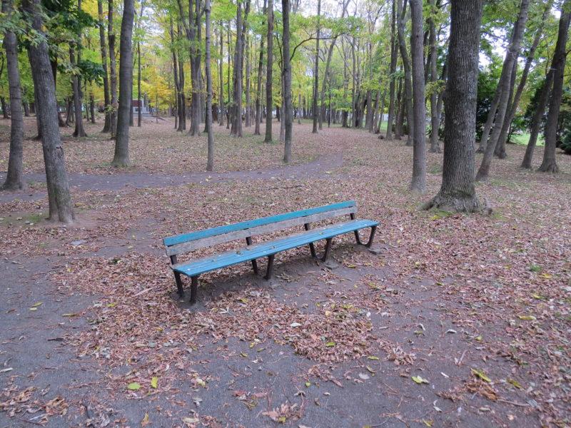 散策路のベンチ