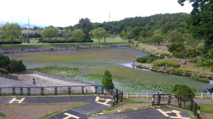ふしきの森方面へ向かう高台から見る観賞池