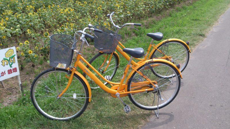 ひまわり自転車