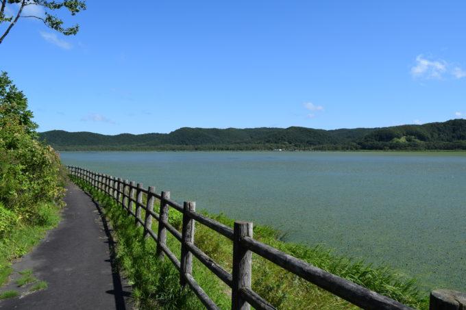 達古武湖の遊歩道