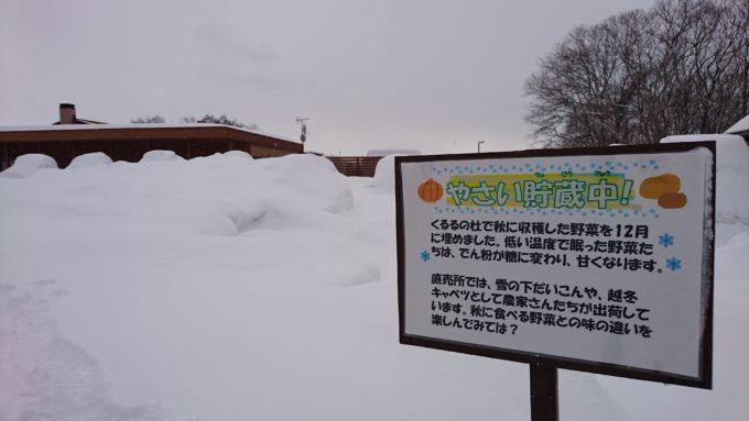 くるるの杜へ冬に行くと「野菜貯蔵中」の看板