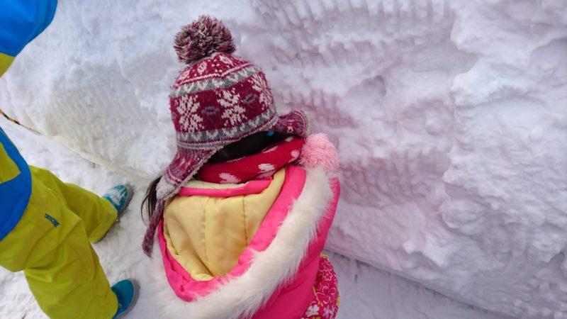 雪の中にある野菜クイズが入っているカプセルを探します