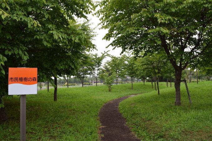 市民植樹の森