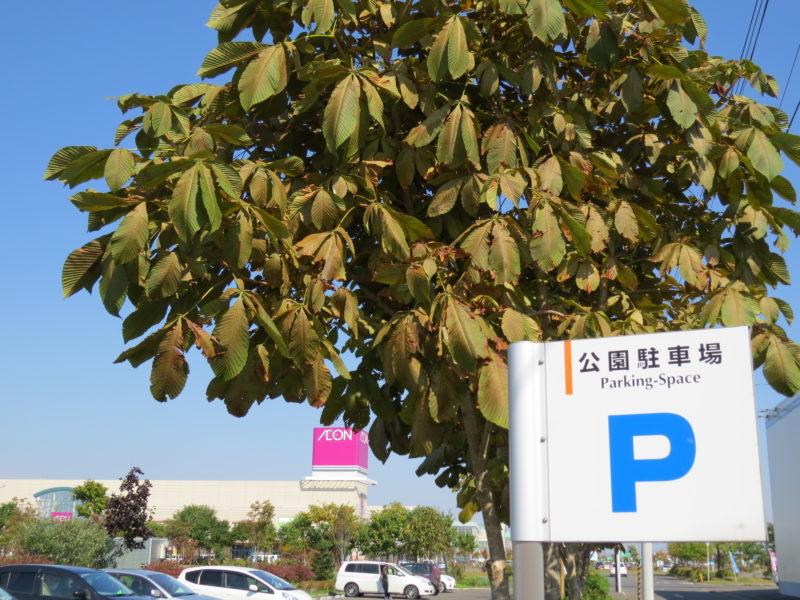 釧路昭和中央公園駐車場