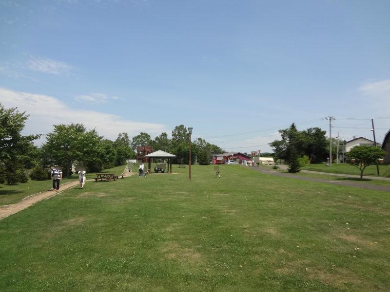 塘路駅前の芝生広場