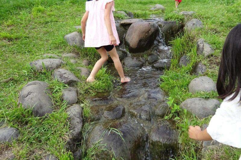 石段の部分はヌメリで滑りやすいので注意