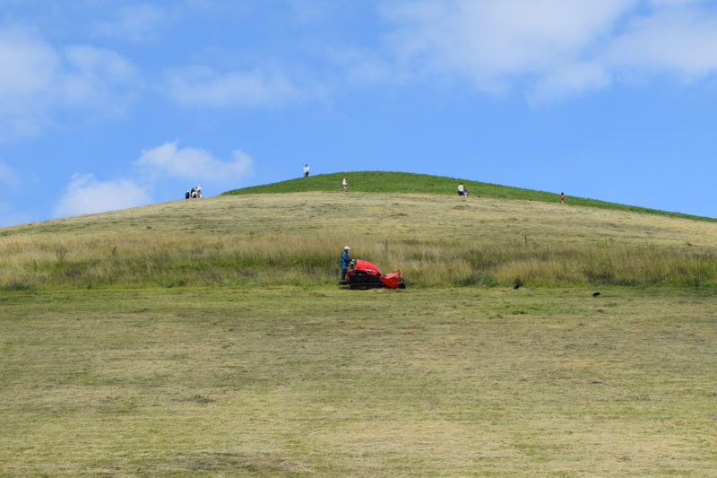 モエレ山の草刈りの様子