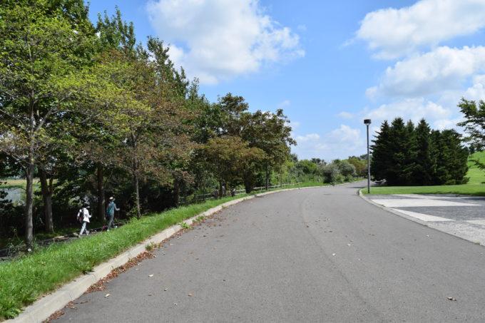 モエレ沼公園内はレンタサイクルで、ぐるっと1周