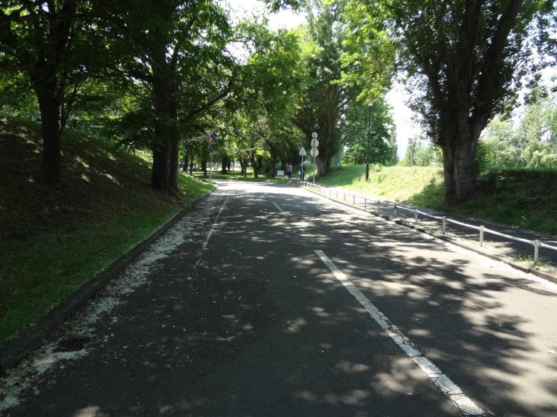 農試公園自転車コース