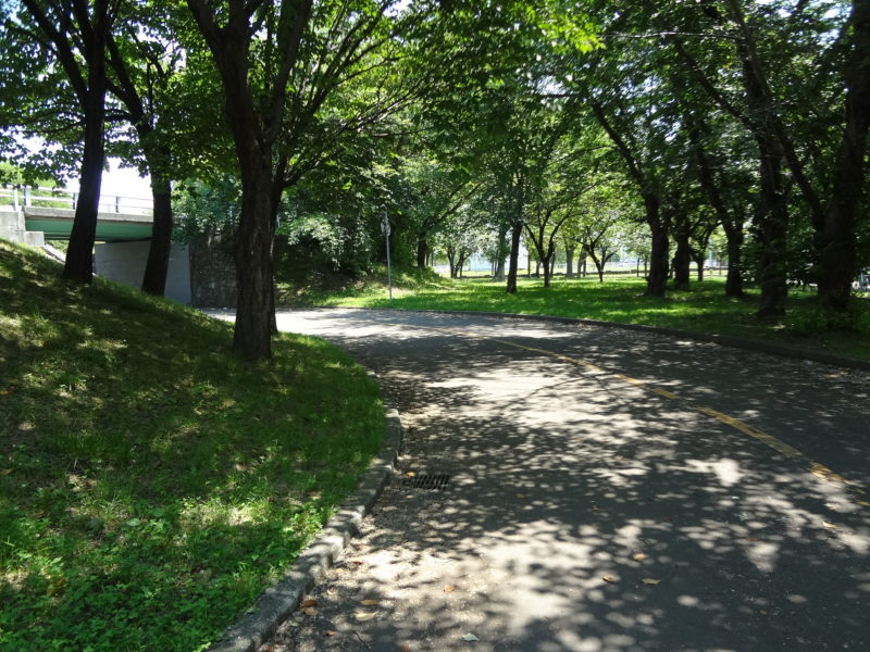 農試公園自転車コーナー