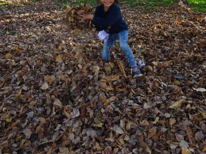 秋になると紅葉も楽しめるさとらんど