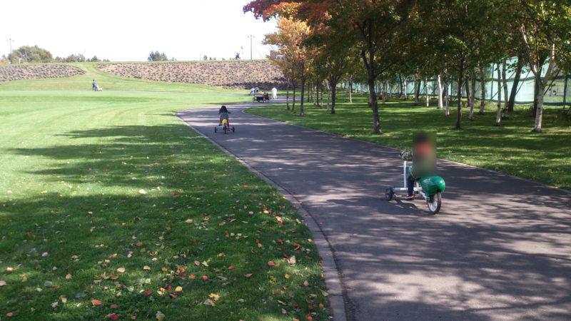 木陰道を走るおもしろ自転車