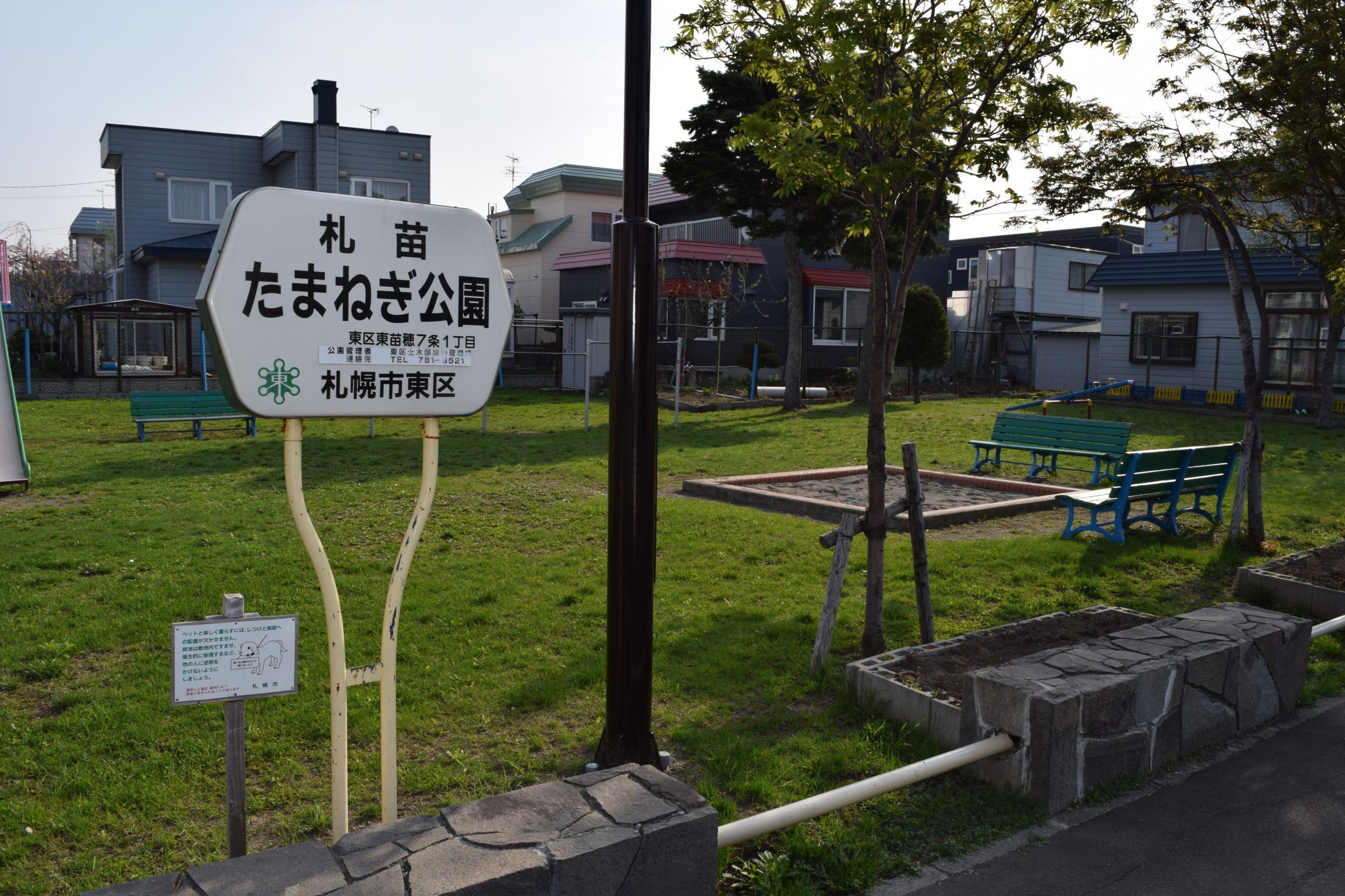 札苗たまねぎ公園