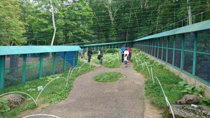 天狗山のシマリス公園