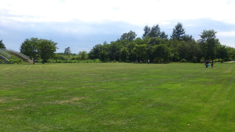 ピクニック広場(芝生広場)