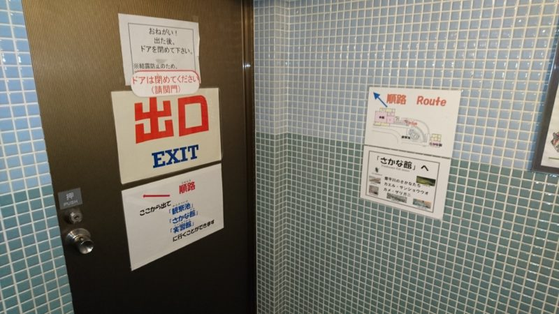 地下観察室