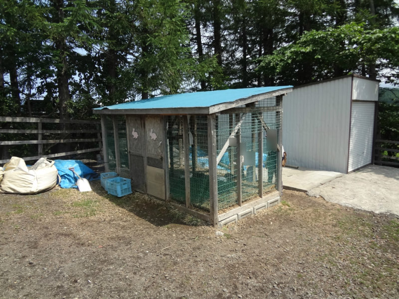 山本観光果樹園ウサギ小屋