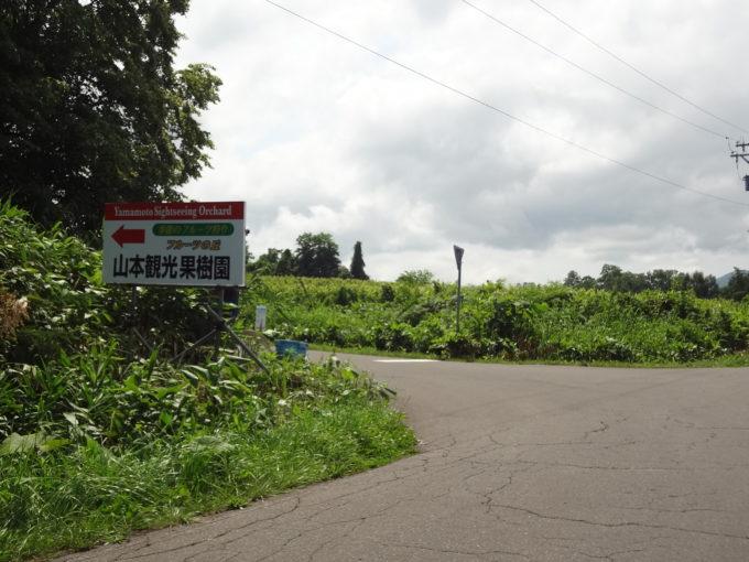 山本観光果樹園までの道のり