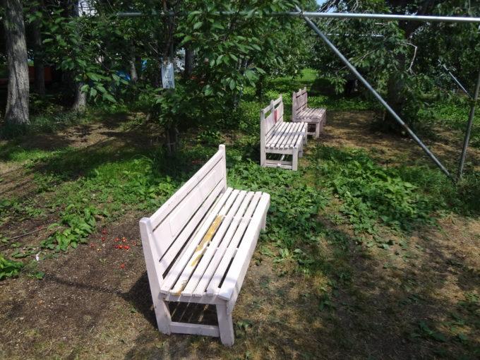 果樹園ビニールハウス下のベンチ
